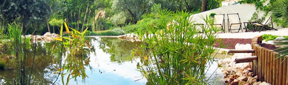 Jardin service cr ation de jardin entretien d 39 espaces for Entretien jardin herault